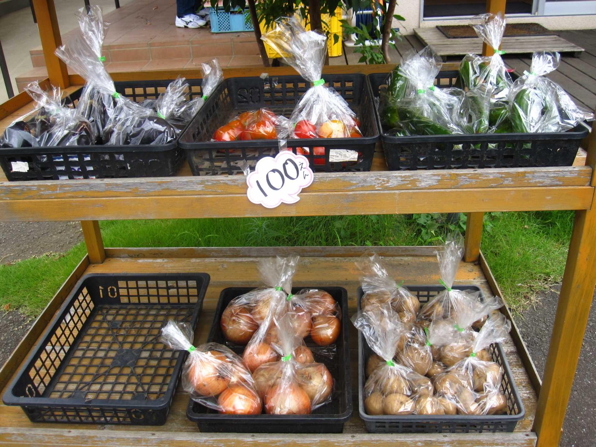 夏野菜(トマト、ナス、キュウリ、玉ねぎ、ジャガイモ)